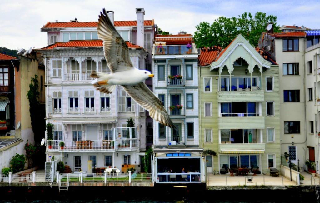 Istanbul Bosphorus Cruise Tours Historic Houses